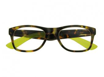 Highgate Brown/Green Front