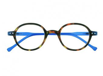 Campbell Tortoiseshell/Blue Front